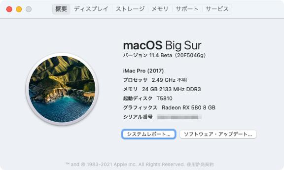 Big Sur on T5810 で「このMacについて」
